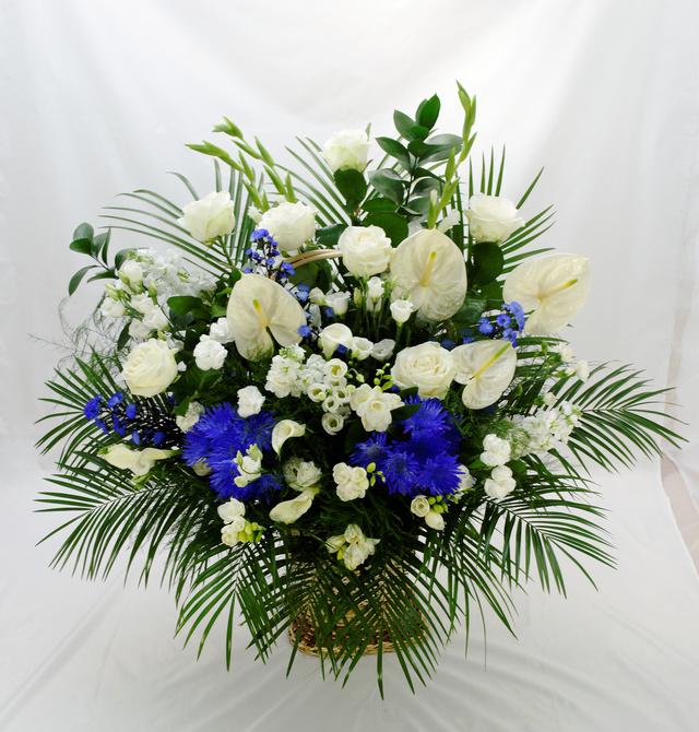 Clic pentru a vedea imaginea mărită Cos asortat pe nuanta de alb si albastru
