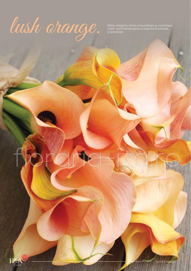 Clic pentru a vedea imaginea mărită Lush orange - Buchet de mireasa