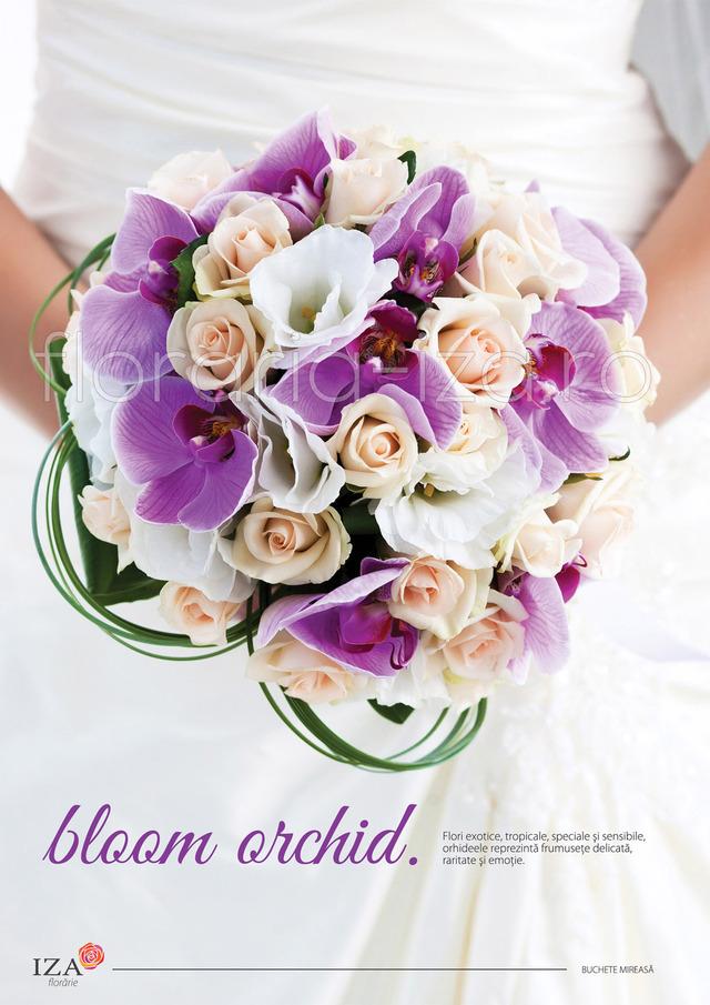 Clic pentru a vedea imaginea mărită Bloom orchid - Buchet de mireasa