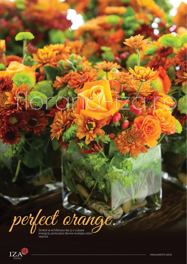 Clic pentru a vedea imaginea mărită Perfect orange - Aranjament de masa
