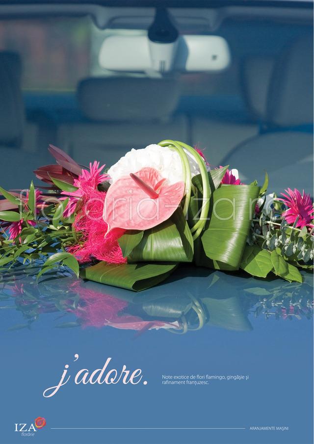 Clic pentru a vedea imaginea mărită J'adore - Aranjament pentru masina