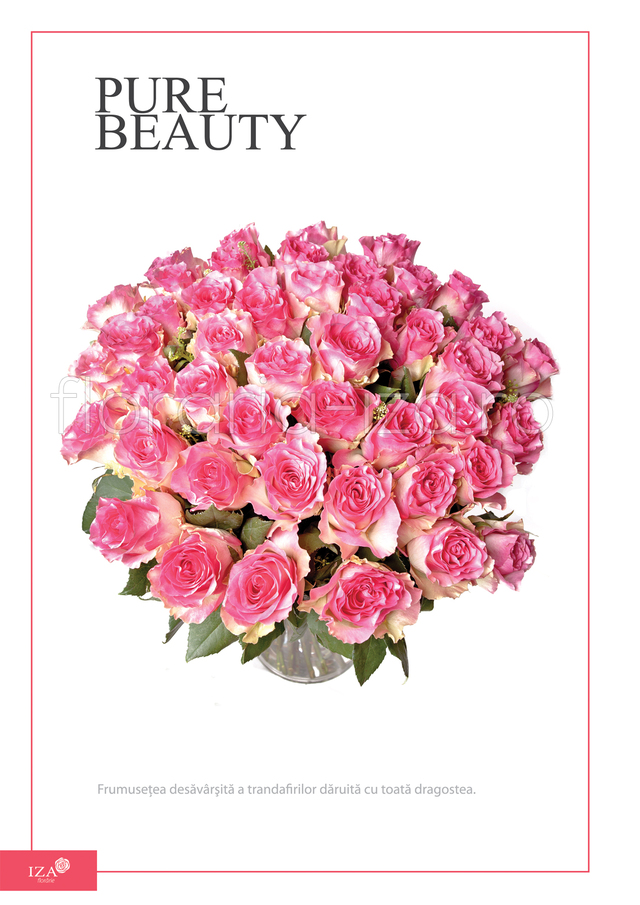 Clic pentru a vedea imaginea mărită Buchet de trandafiri - Pure beauty