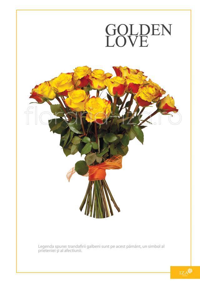 Clic pentru a vedea imaginea mărită Buchet de 17 trandafiri - Golden love
