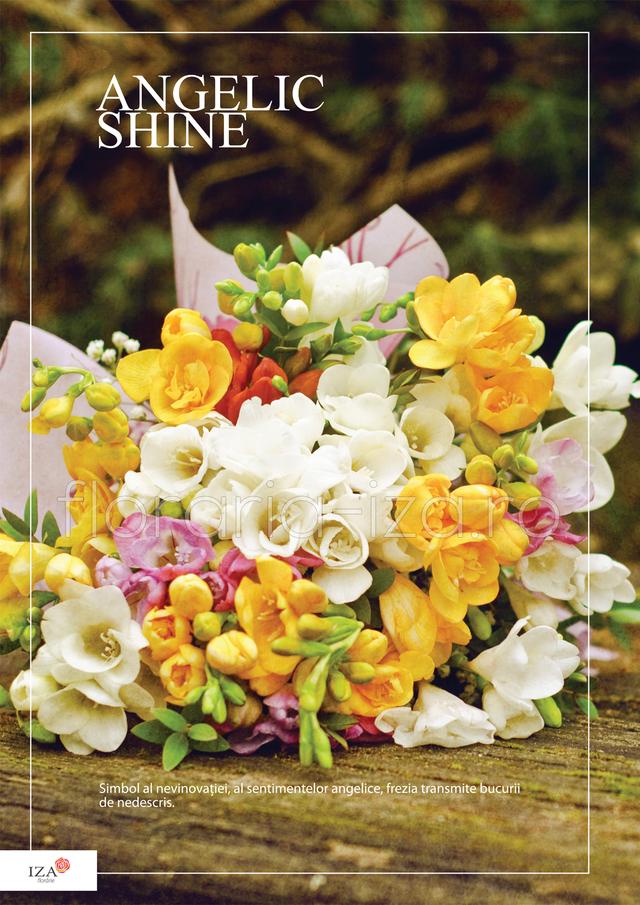 Clic pentru a vedea imaginea mărită Buchet de fresii  - Angelic shine
