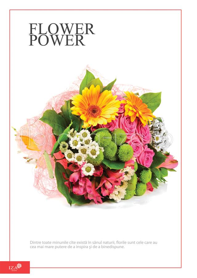 Clic pentru a vedea imaginea mărită Buchet asortat - Flower power