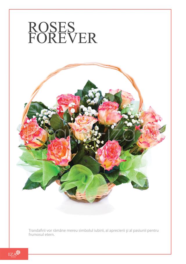 Clic pentru a vedea imaginea mărită Cos trandafiri - Roses forever