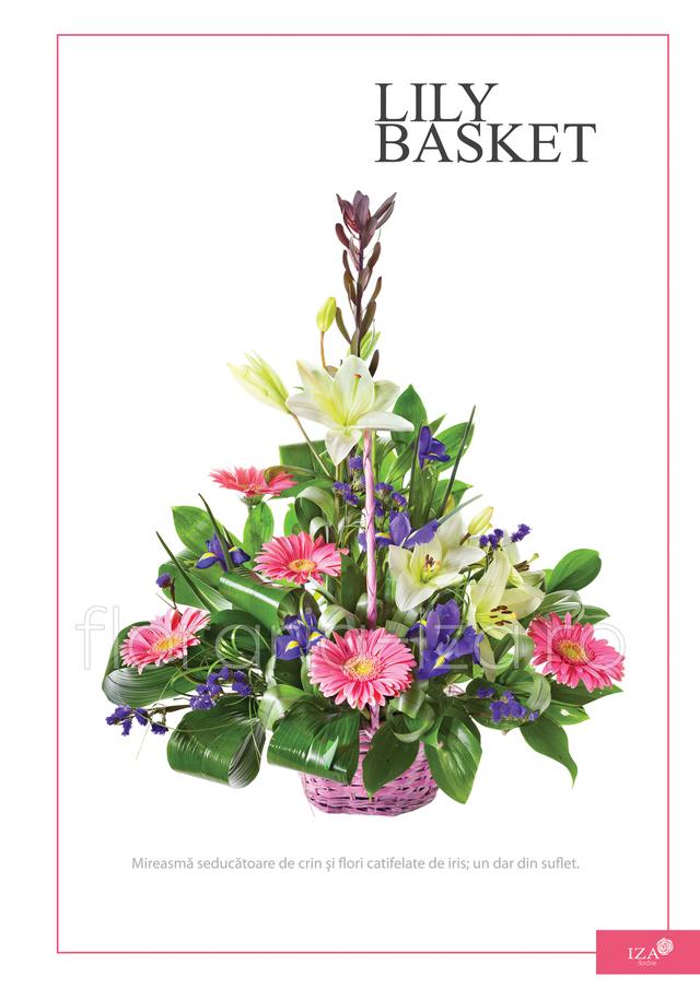 Clic pentru a vedea imaginea mărită Cos asortat - Lily basket