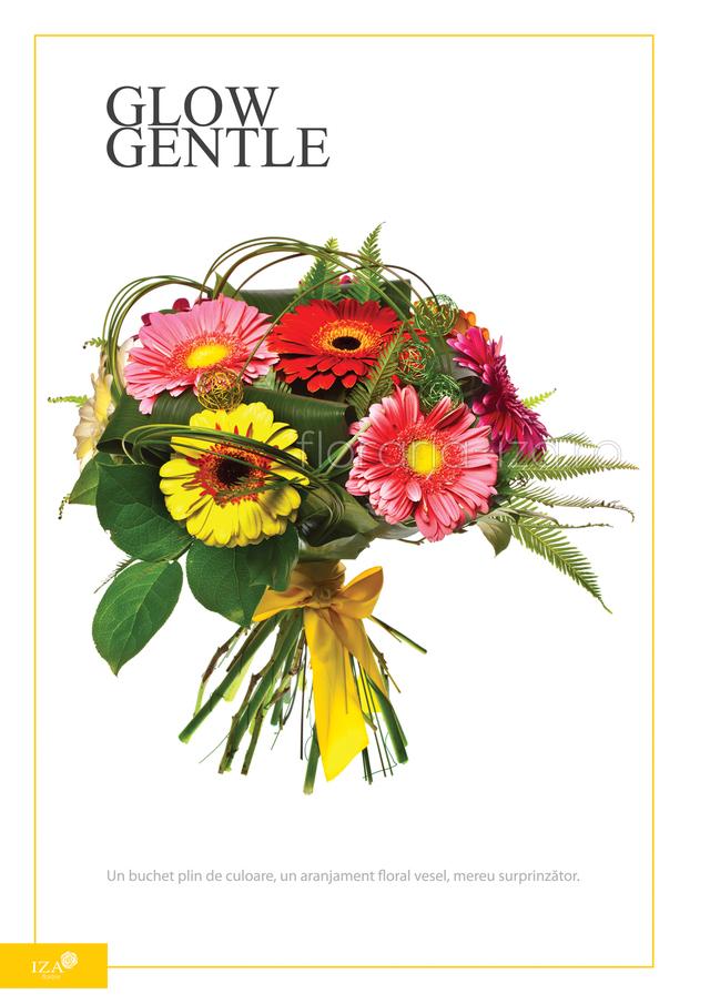 Clic pentru a vedea imaginea mărită Buchet asortat - Glow gentle