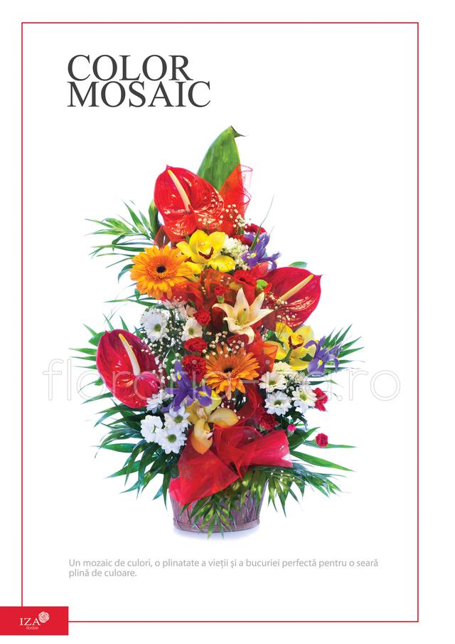 Clic pentru a vedea imaginea mărită Cos asortat - Color mosaic