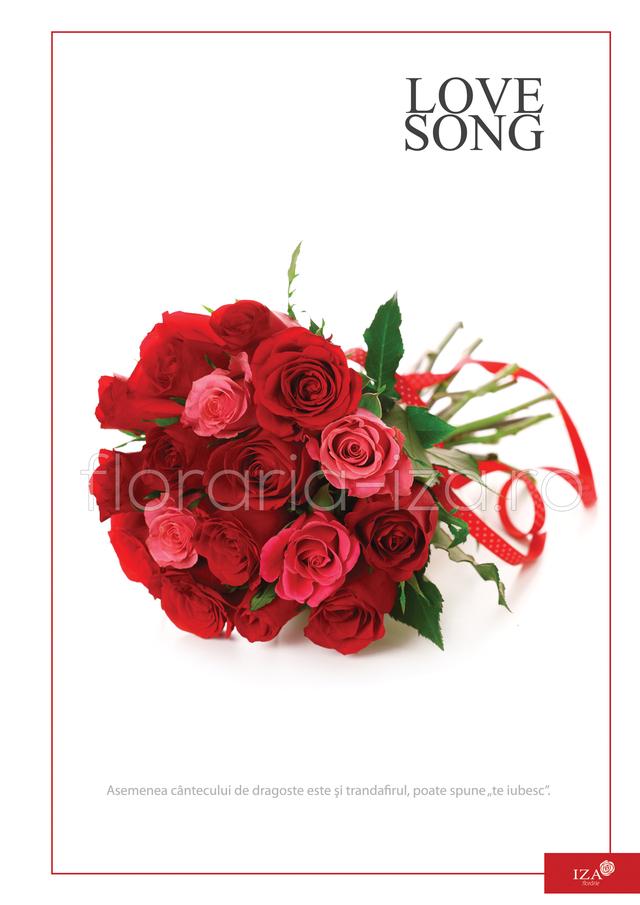 Clic pentru a vedea imaginea mărită Buchet din 17 trandafiri - Love song
