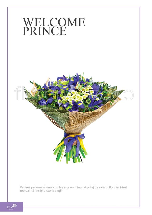 Clic pentru a vedea imaginea mărită Buchet asortat - Welcome prince
