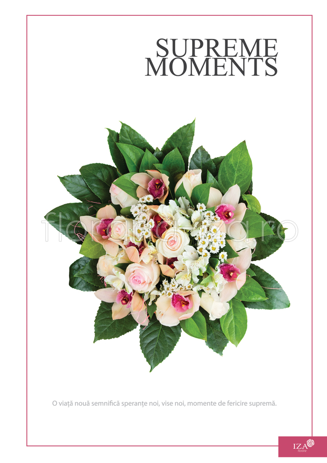 Clic pentru a vedea imaginea mărită Buchet asortat - Supreme moments